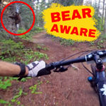 bear mountain biker encounter